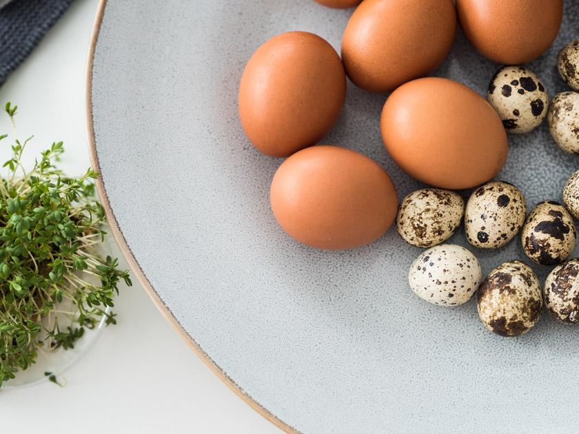 Best of Ostern mit Kindern